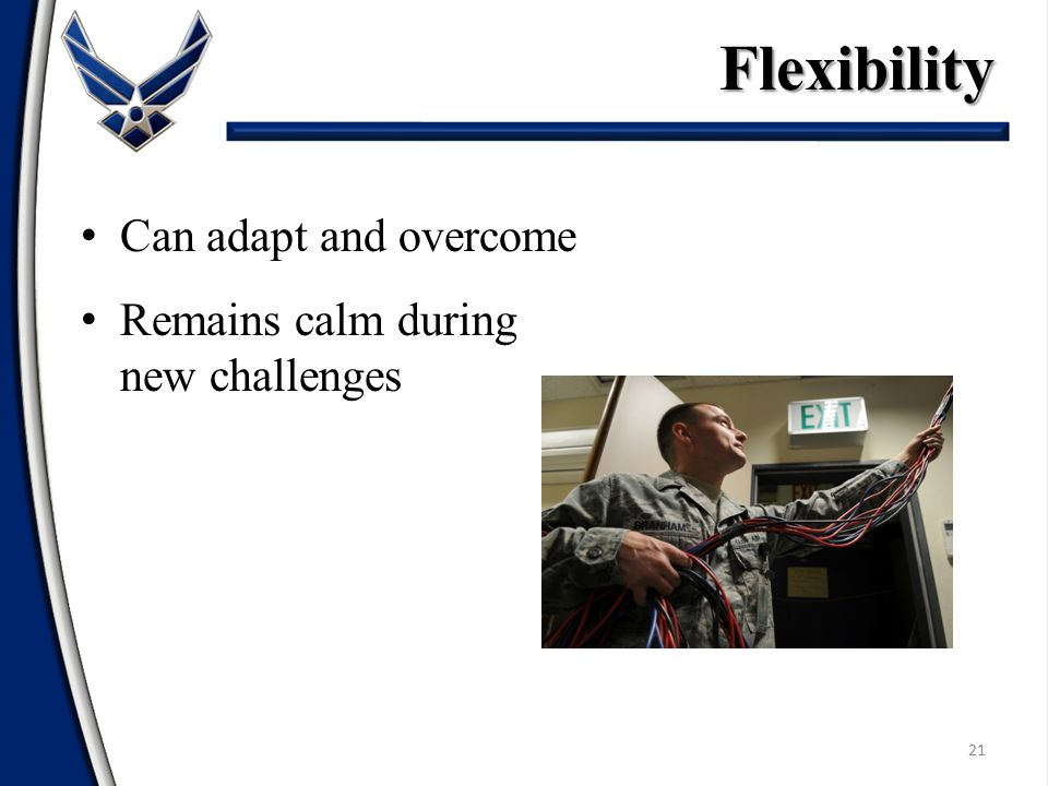 Flexibility Can adapt and overcome Remains calm during new challenges