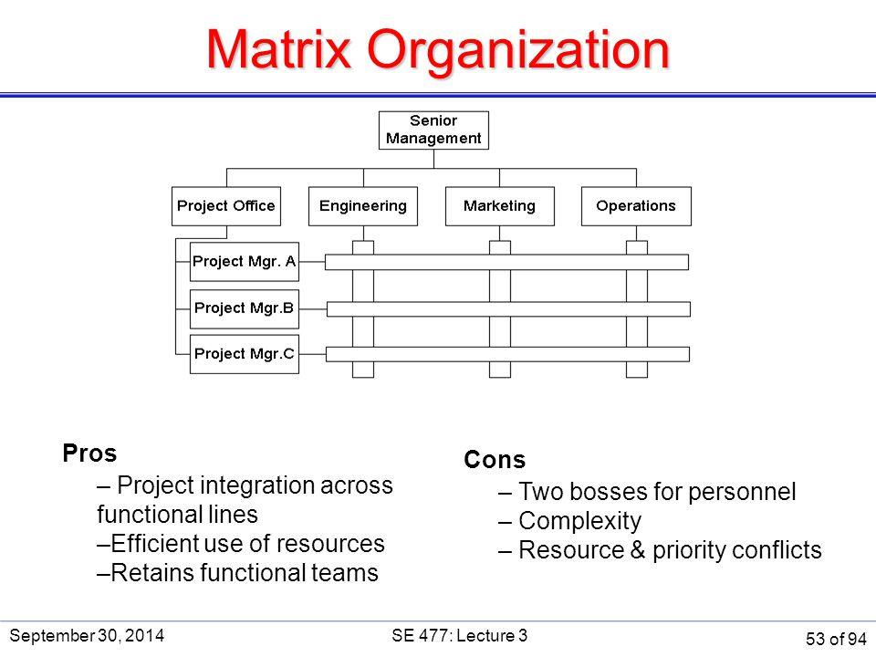 Matrix Organization Pros Cons