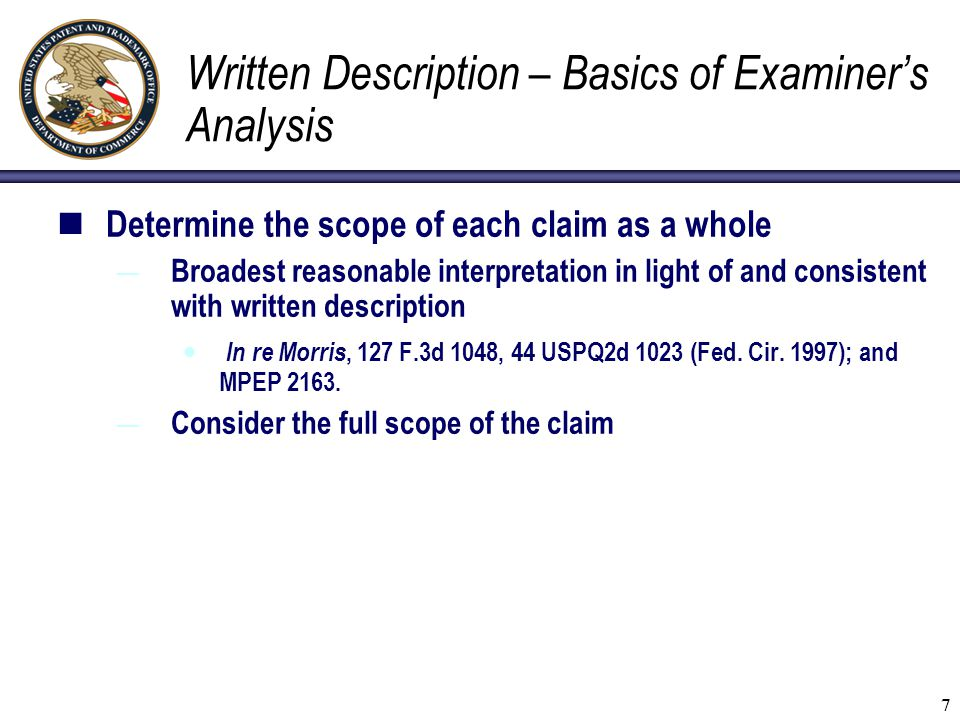 Written Description – Basics of Examiner's Analysis