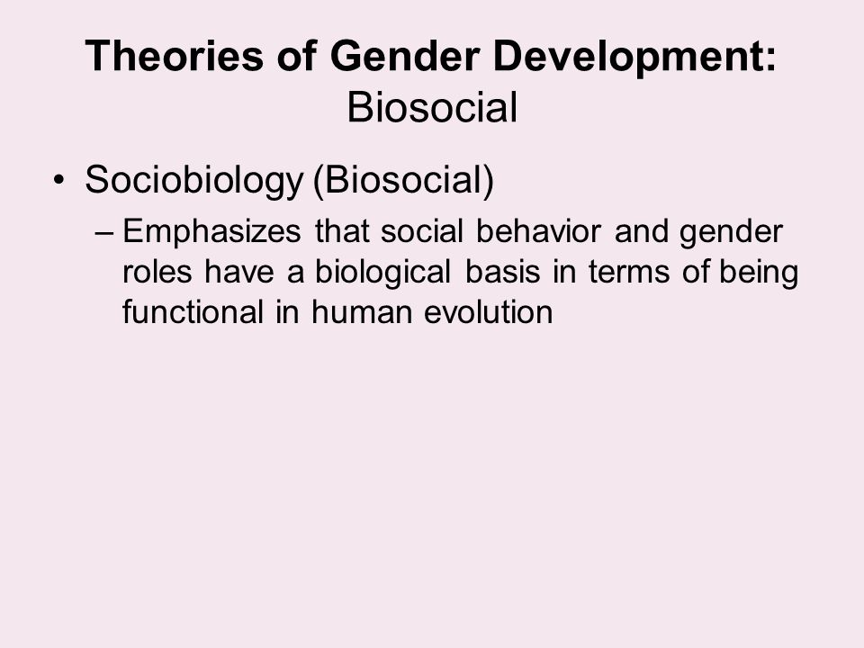 Theories of Gender Development: Biosocial