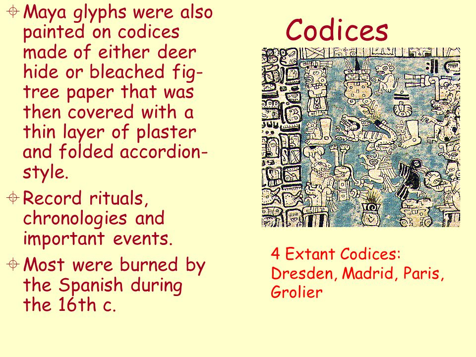 Maya glyphs were also painted on codices made of either deer hide or bleached fig- tree paper that was then covered with a thin layer of plaster and folded accordion- style.