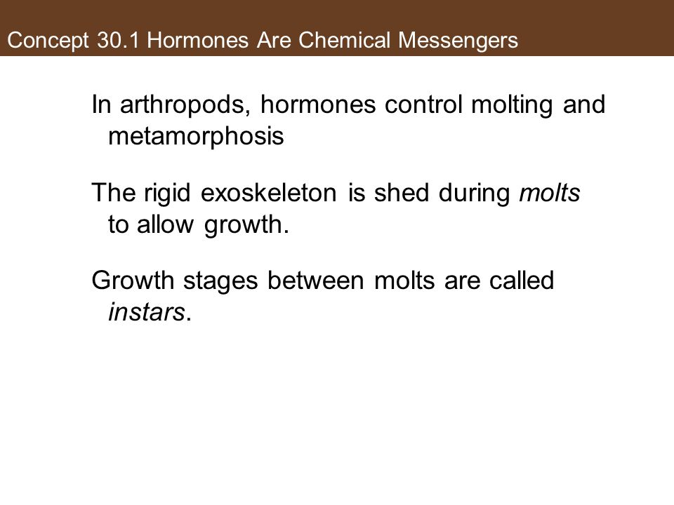 Concept 30.1 Hormones Are Chemical Messengers