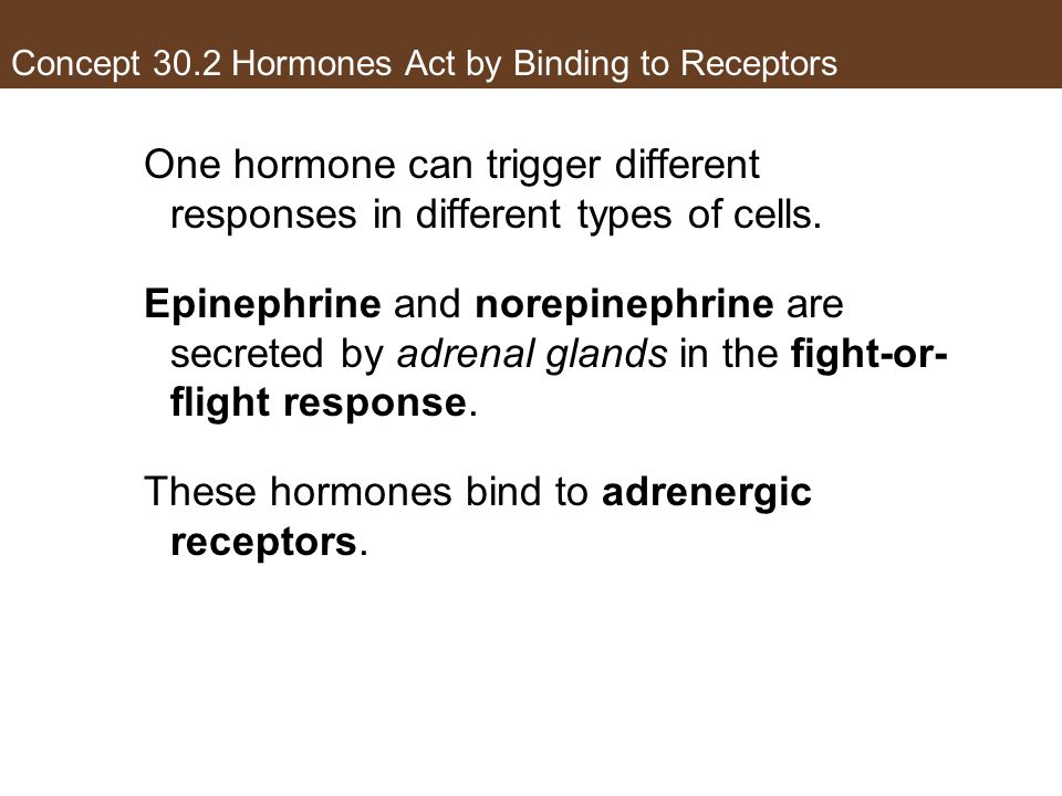 Concept 30.2 Hormones Act by Binding to Receptors