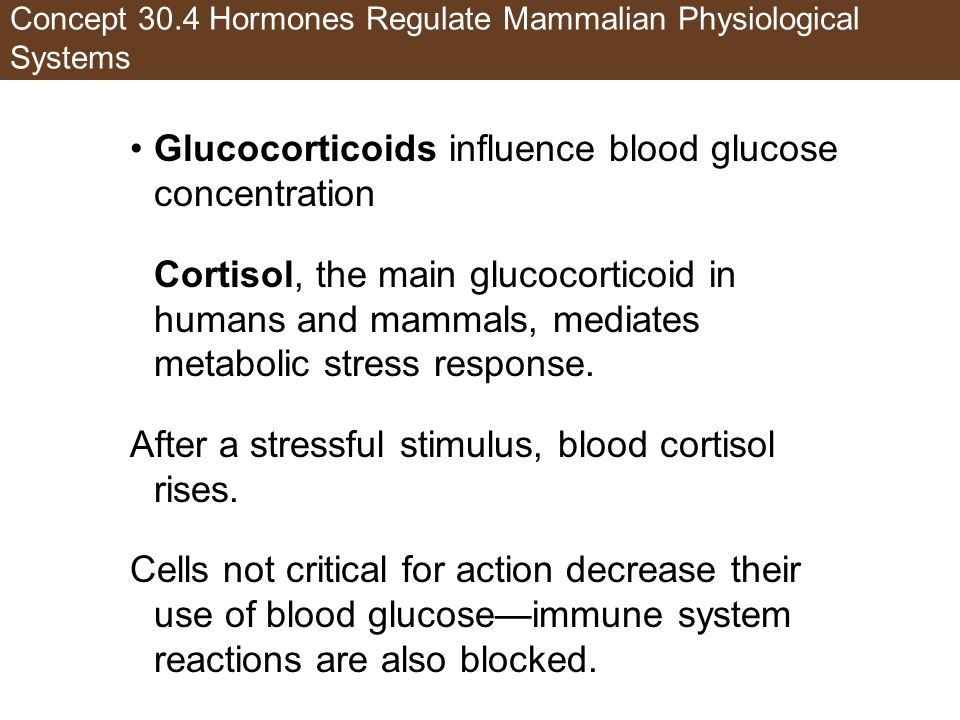 Concept 30.4 Hormones Regulate Mammalian Physiological Systems
