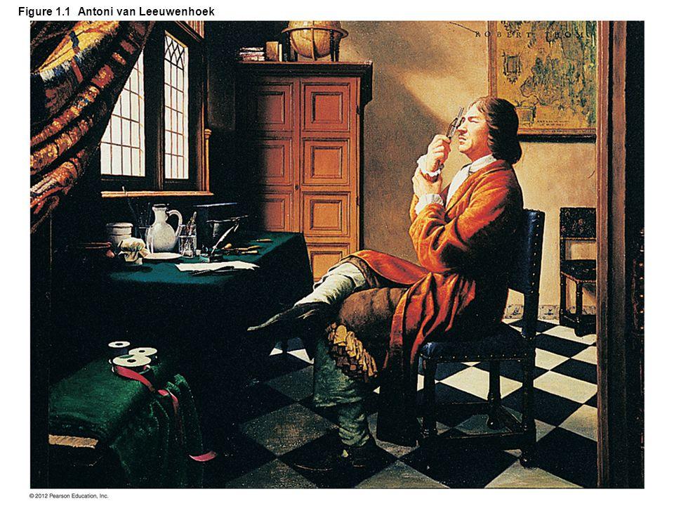 Figure 1.1 Antoni van Leeuwenhoek