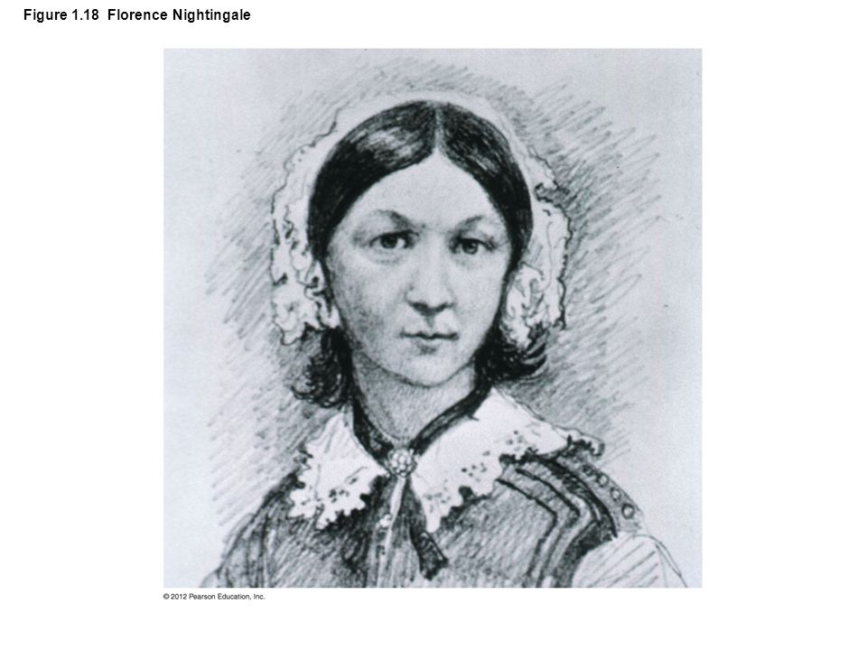 Figure 1.18 Florence Nightingale