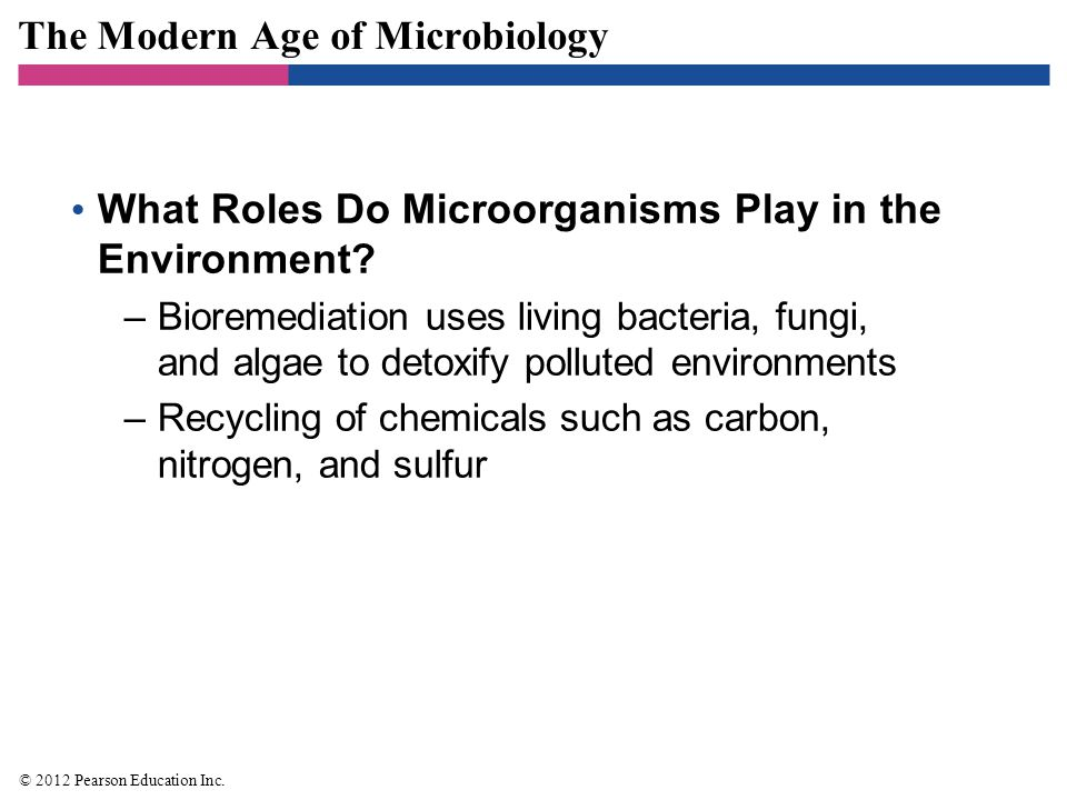 The Modern Age of Microbiology