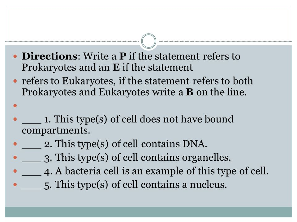 Directions: Write a P if the statement refers to Prokaryotes and an E if the statement