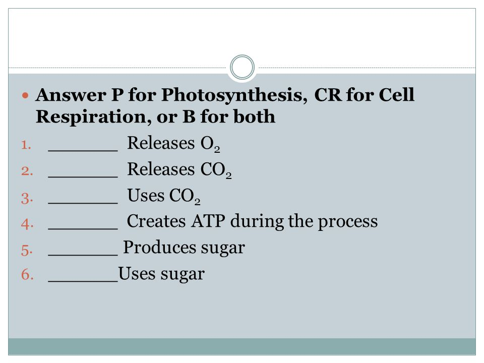 Answer P for Photosynthesis, CR for Cell Respiration, or B for both