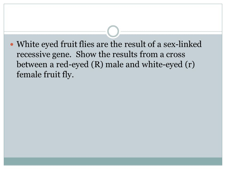 White eyed fruit flies are the result of a sex-linked recessive gene