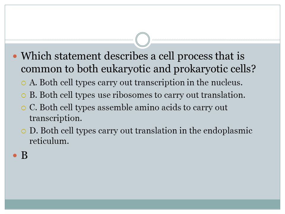 Which statement describes a cell process that is common to both eukaryotic and prokaryotic cells