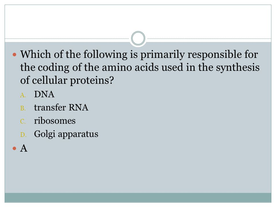 Which of the following is primarily responsible for the coding of the amino acids used in the synthesis of cellular proteins