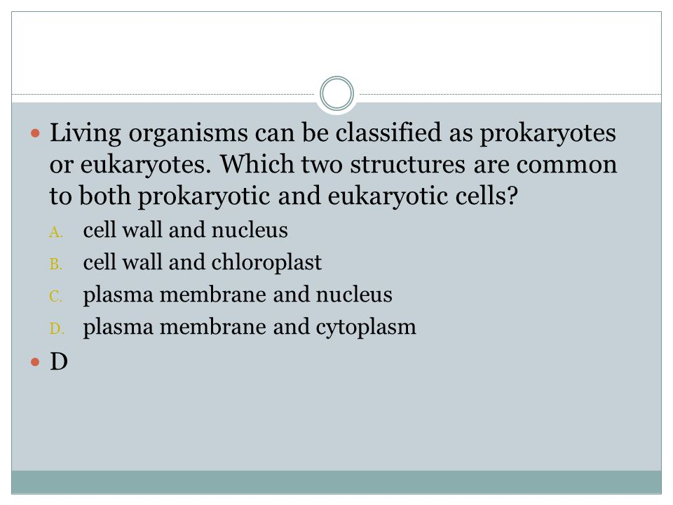 Living organisms can be classified as prokaryotes or eukaryotes