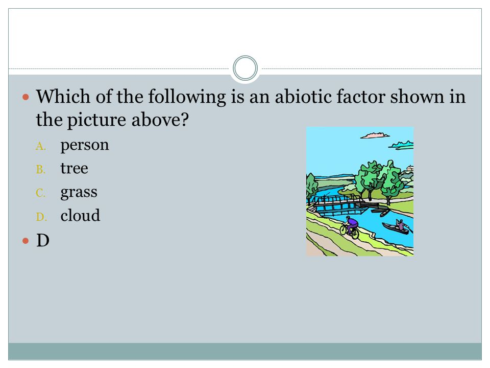Which of the following is an abiotic factor shown in the picture above