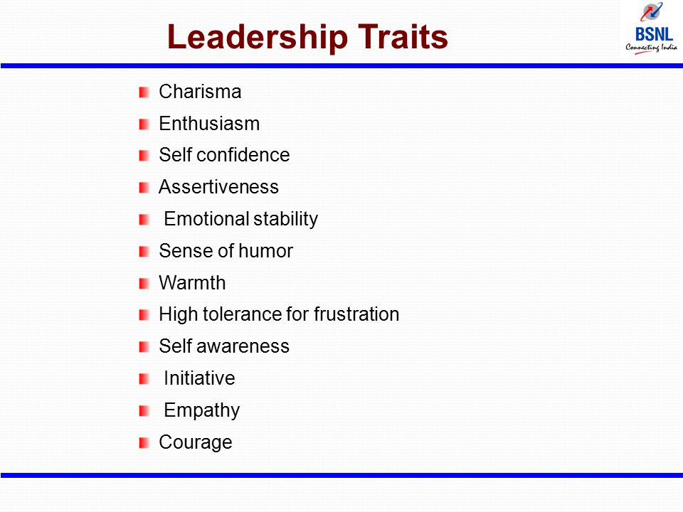 Leadership Traits Charisma Enthusiasm Self confidence Assertiveness