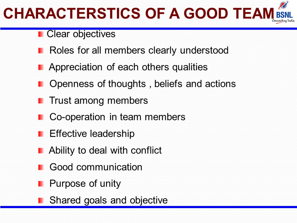 CHARACTERSTICS OF A GOOD TEAM