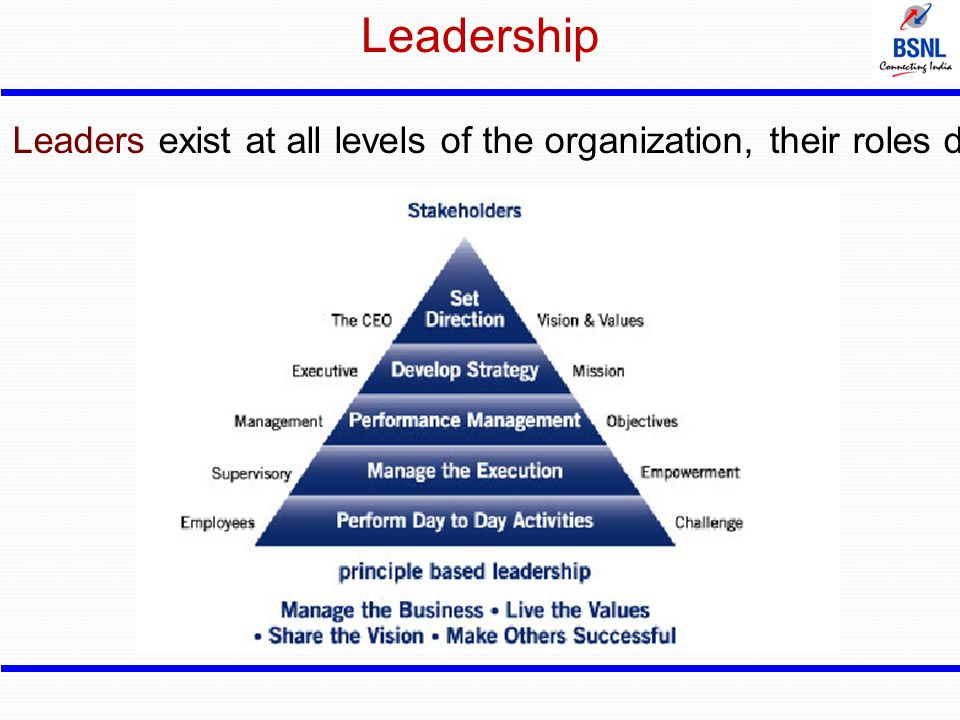 Leadership Leaders exist at all levels of the organization, their roles differ.