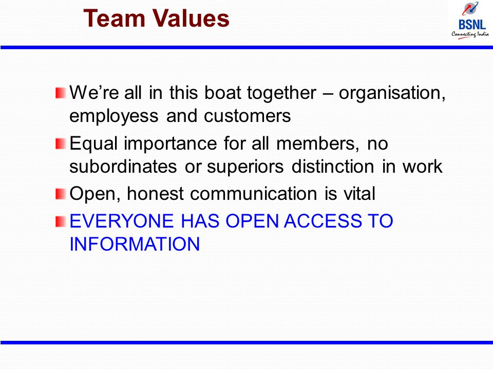 Team Values We're all in this boat together – organisation, employess and customers.