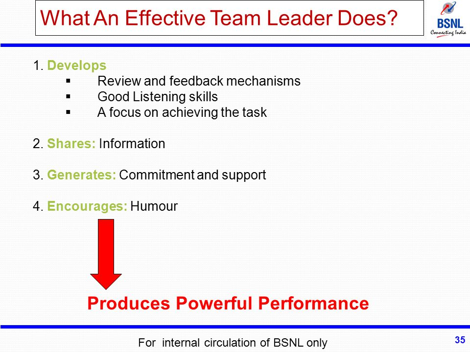 What An Effective Team Leader Does