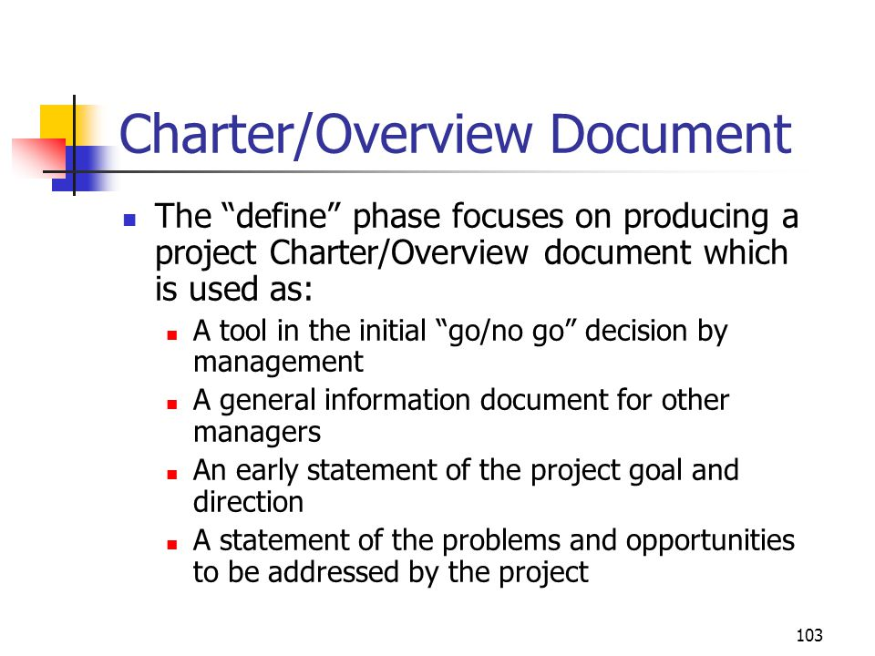 Charter/Overview Document