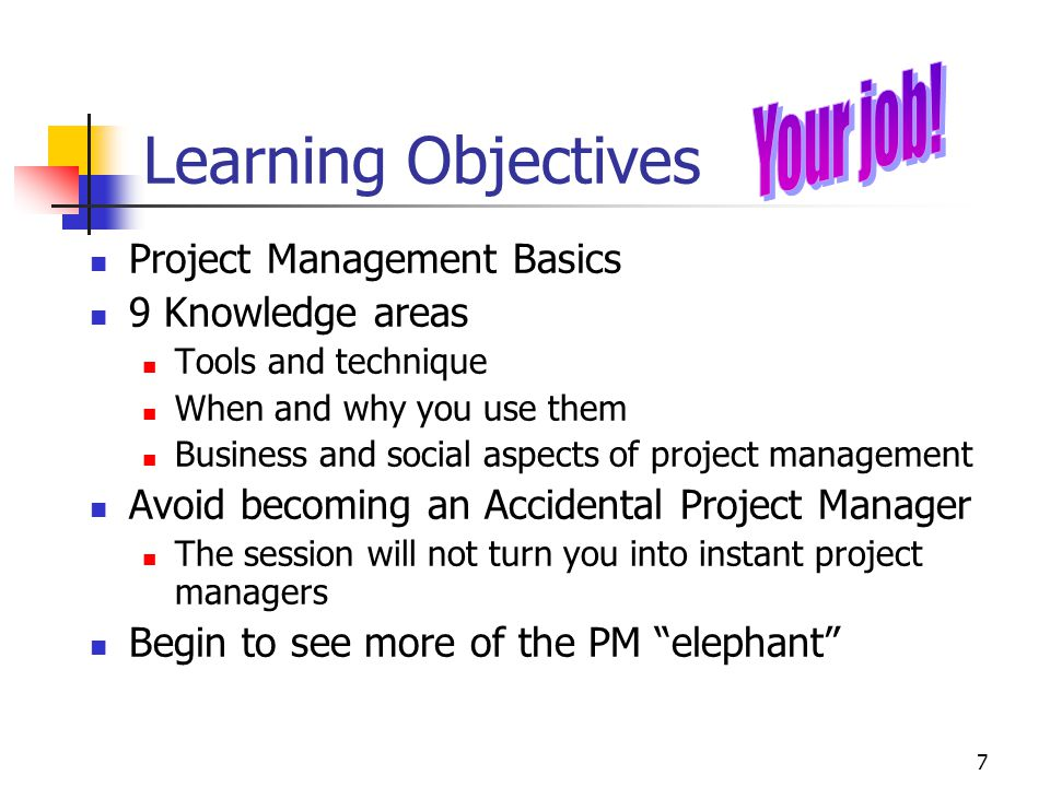 Learning Objectives Your job! Project Management Basics