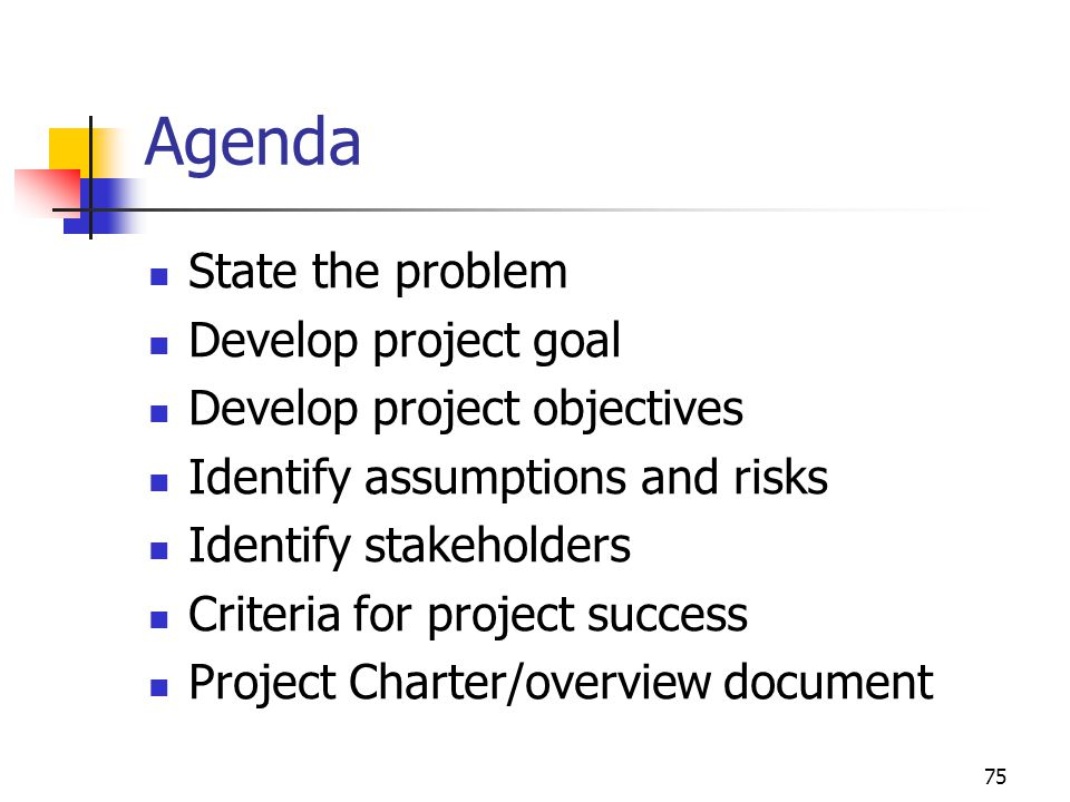 Agenda State the problem Develop project goal
