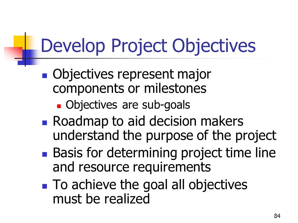 Develop Project Objectives