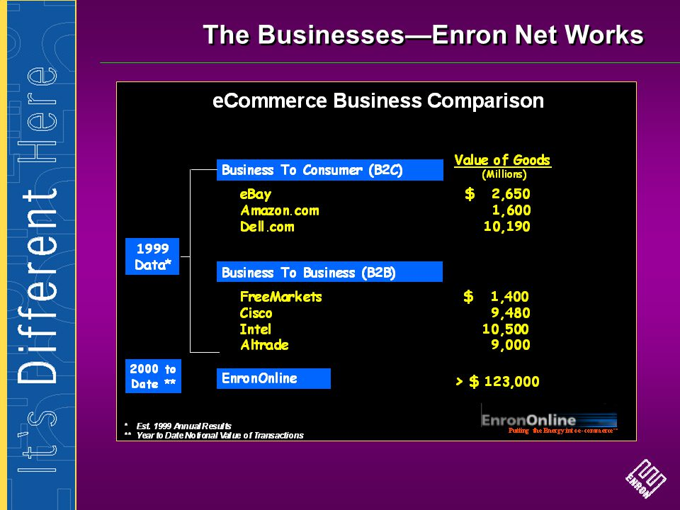 The Businesses—Enron Net Works