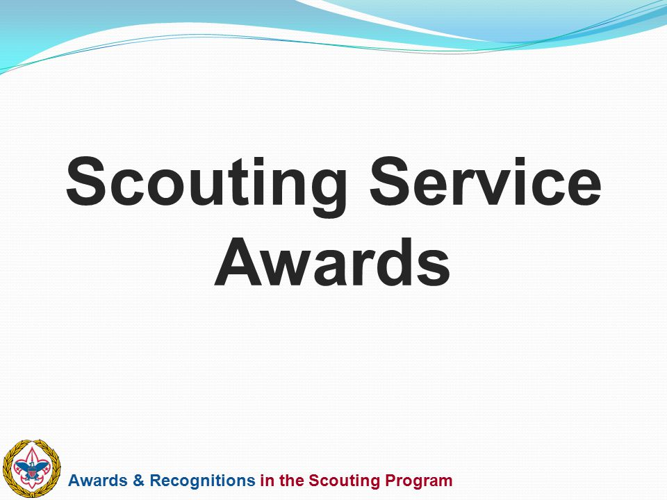 Scouting Service Awards