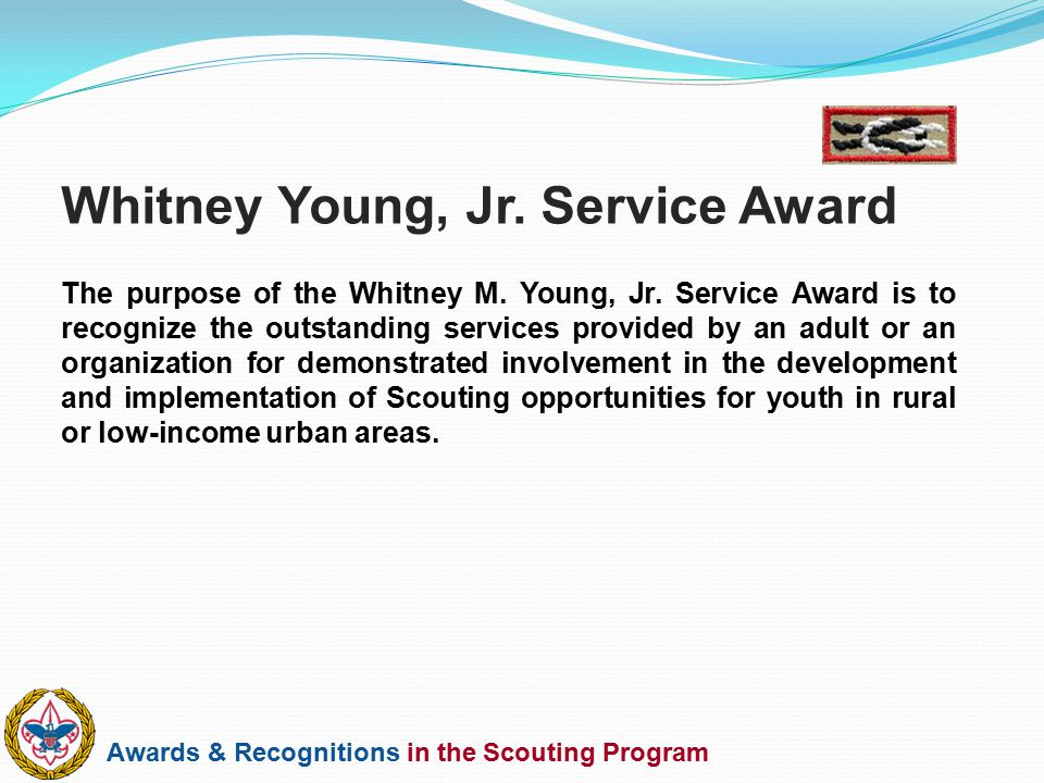 Whitney Young, Jr. Service Award
