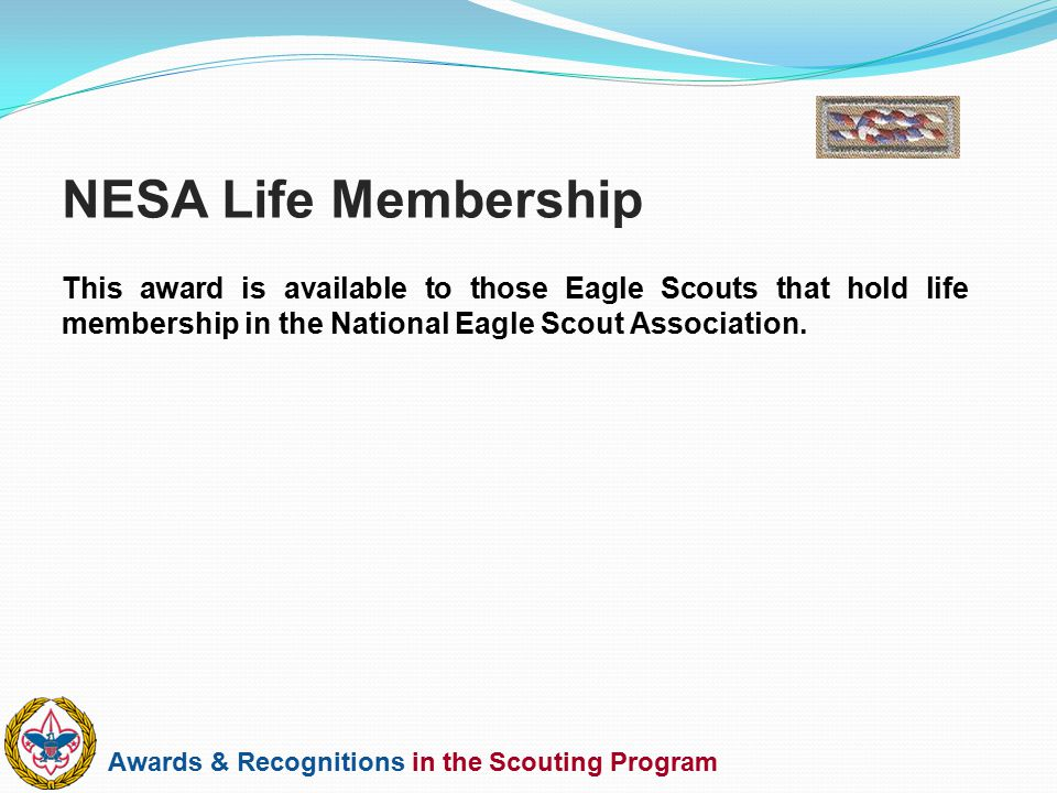 NESA Life Membership This award is available to those Eagle Scouts that hold life membership in the National Eagle Scout Association.