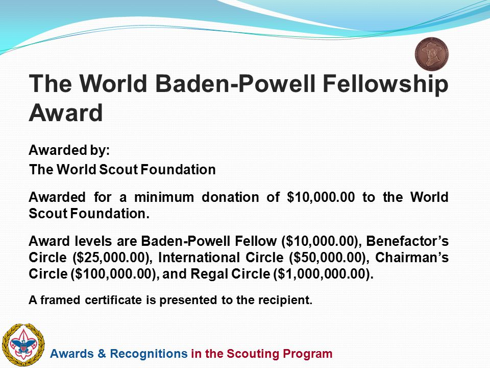 The World Baden-Powell Fellowship Award