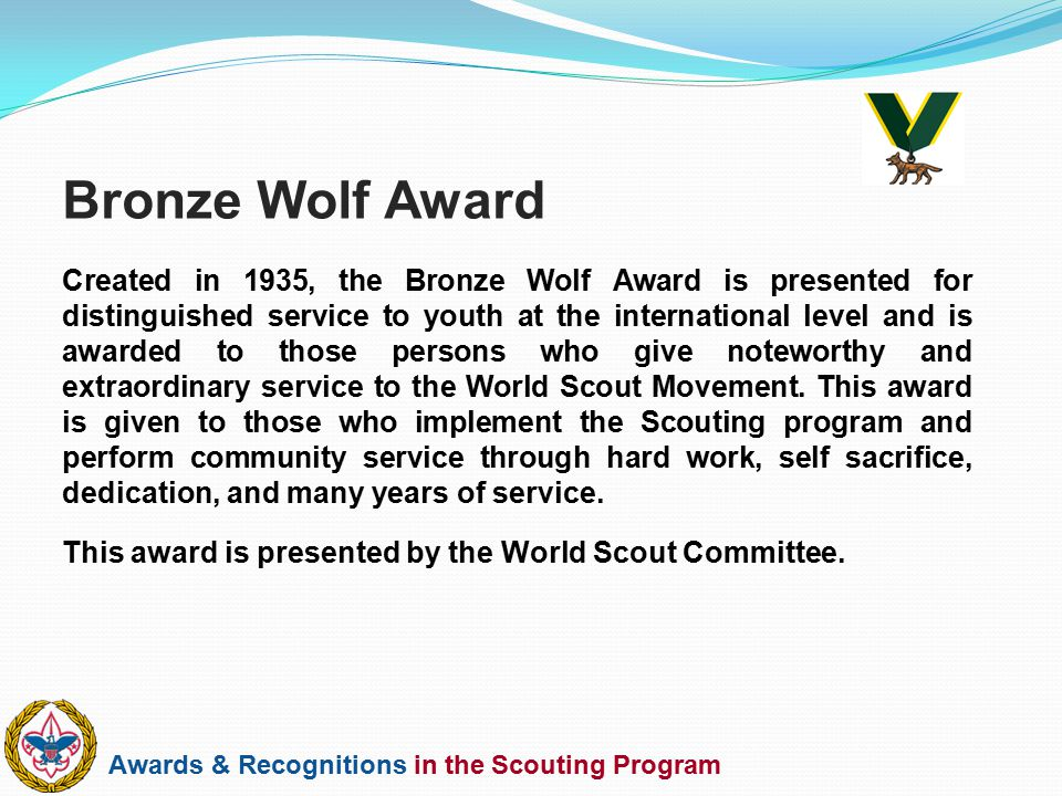 Bronze Wolf Award