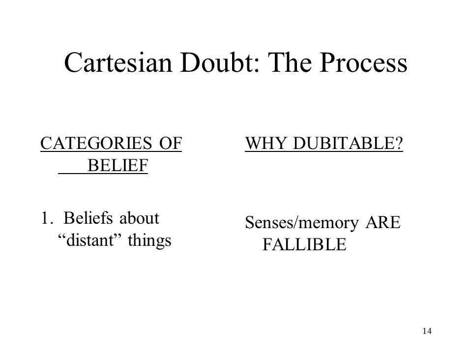 Cartesian Doubt: The Process
