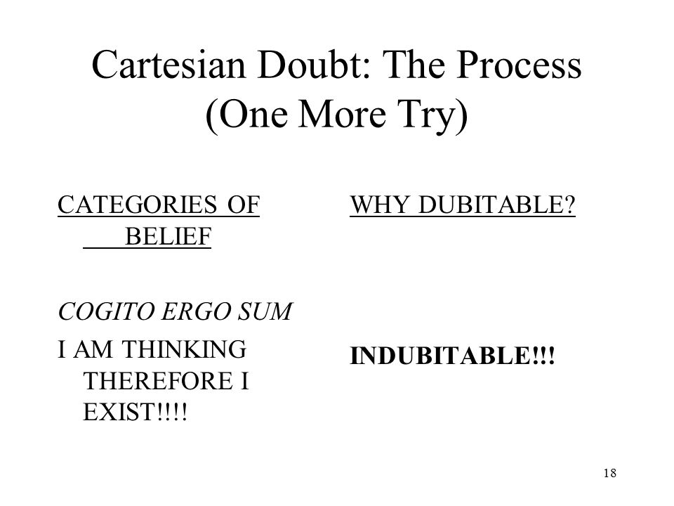 Cartesian Doubt: The Process (One More Try)