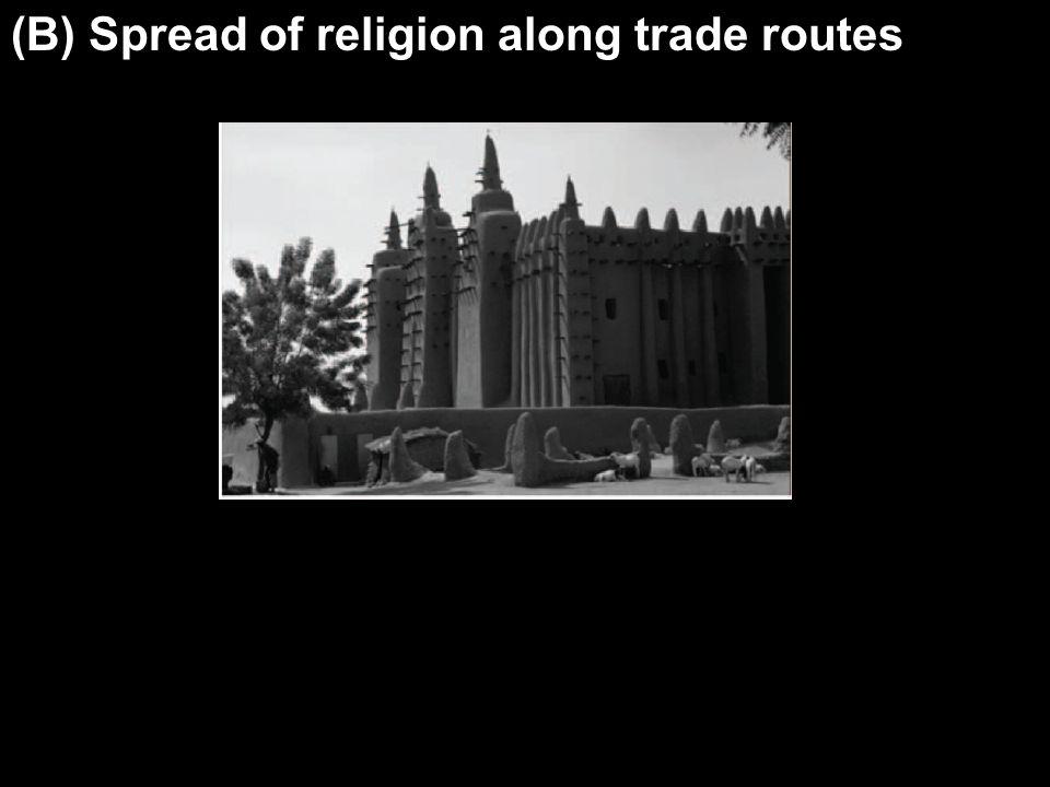 (B) Spread of religion along trade routes