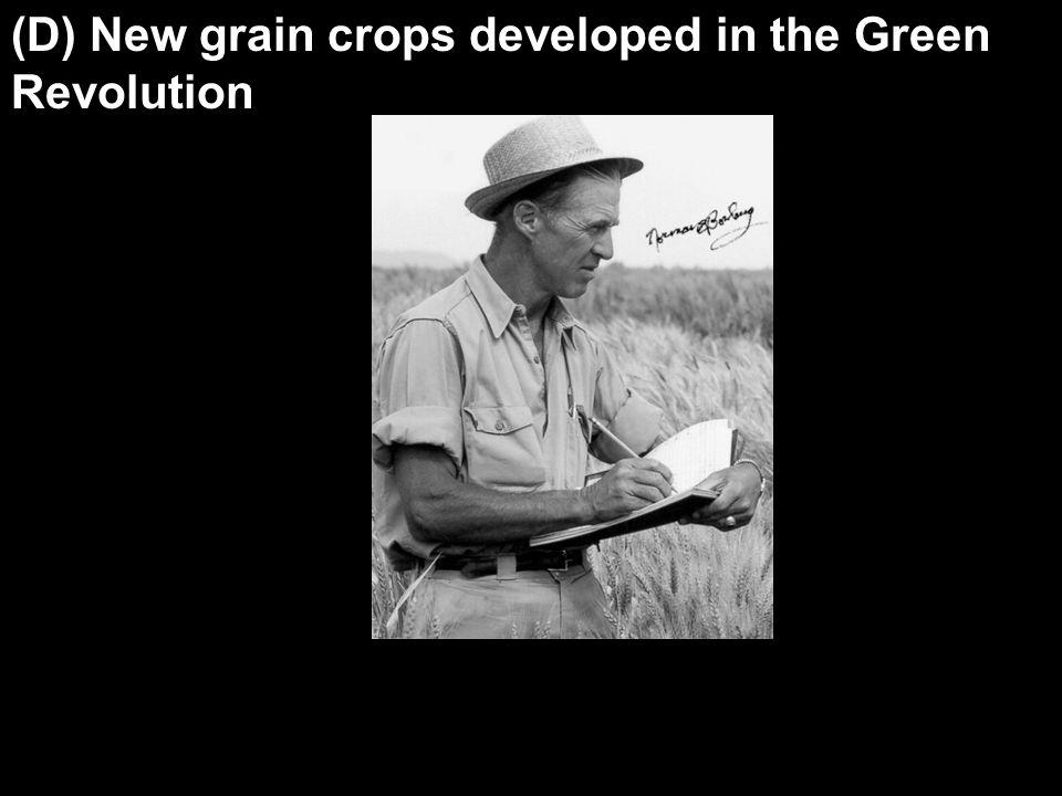 (D) New grain crops developed in the Green Revolution