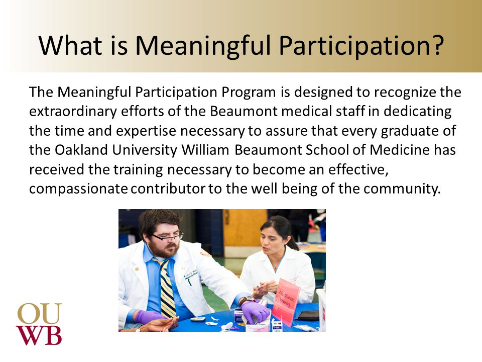 What is Meaningful Participation