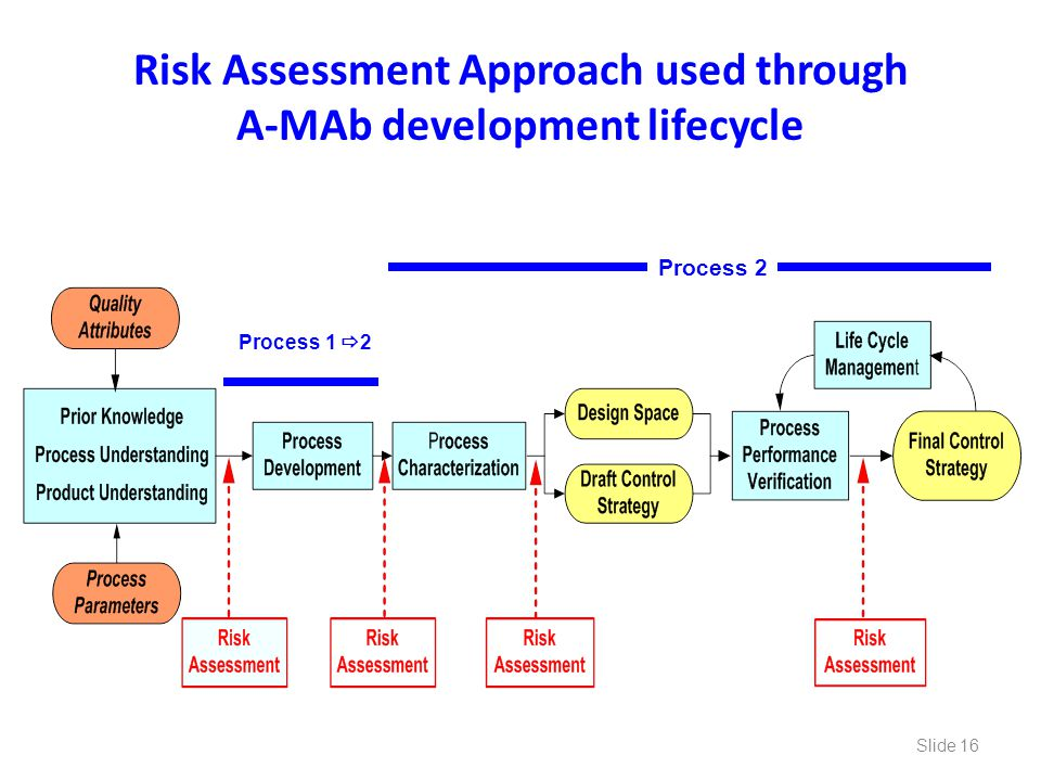Risk Assessment Approach used through A-MAb development lifecycle