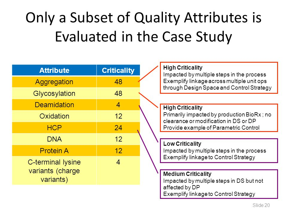 Only a Subset of Quality Attributes is Evaluated in the Case Study