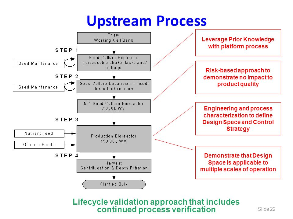 Upstream Process Leverage Prior Knowledge with platform process. Risk-based approach to demonstrate no impact to product quality.