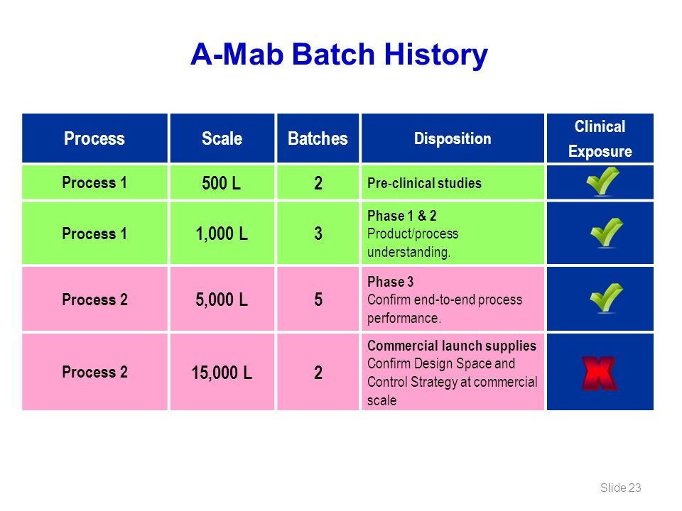 X A-Mab Batch History Process Scale Batches 500 L 2 1,000 L 3 5,000 L