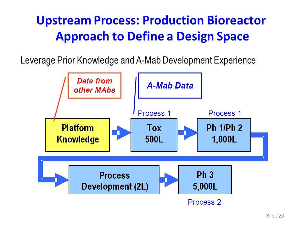 Upstream Process: Production Bioreactor Approach to Define a Design Space
