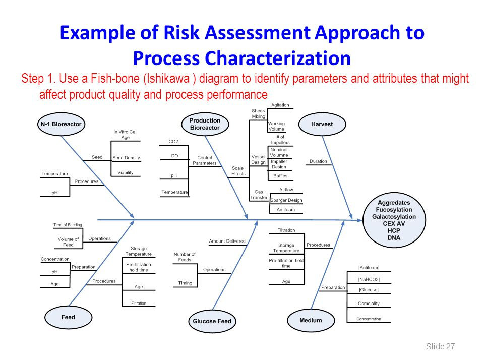 Example of Risk Assessment Approach to Process Characterization