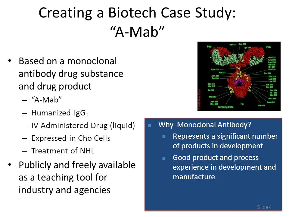 Creating a Biotech Case Study: A-Mab