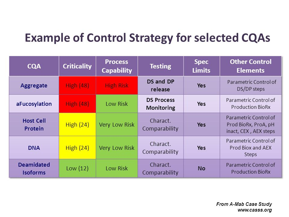 Example of Control Strategy for selected CQAs