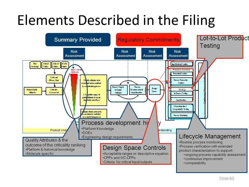 Elements Described in the Filing