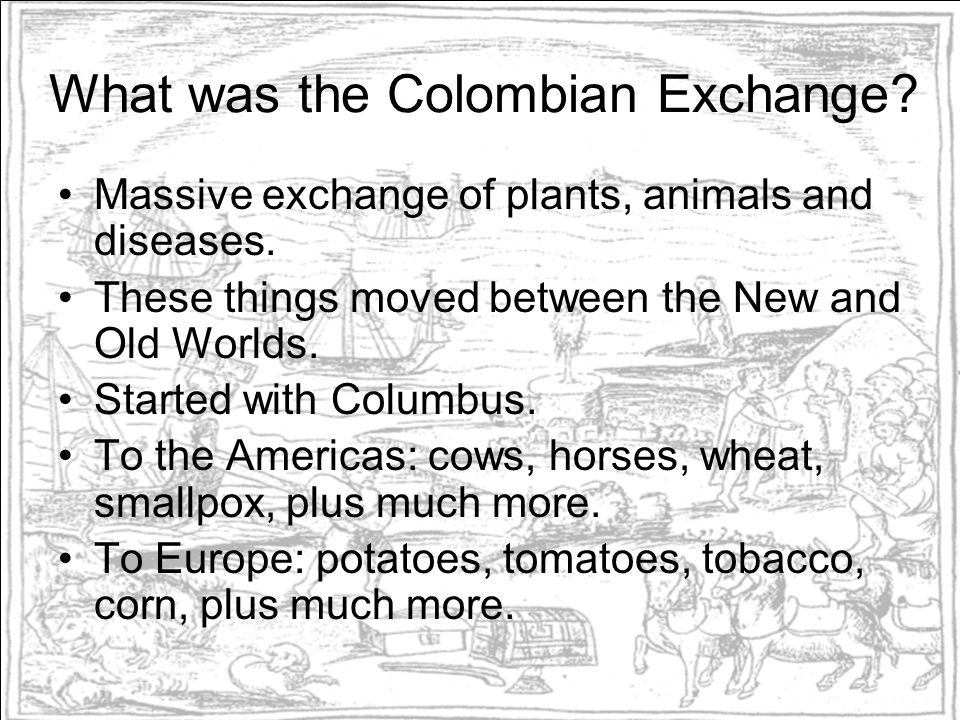 What was the Colombian Exchange