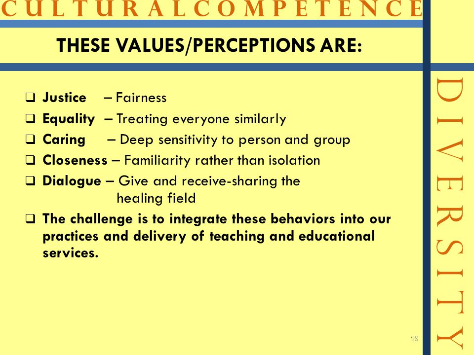 THESE VALUES/PERCEPTIONS ARE: