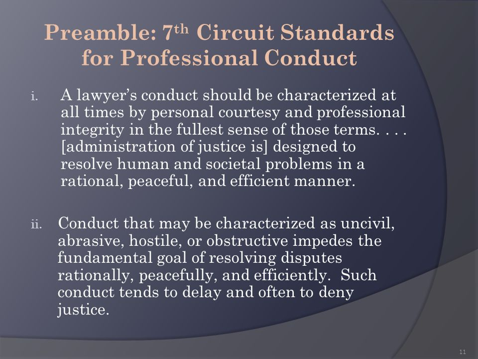 Preamble: 7th Circuit Standards for Professional Conduct
